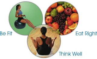 wellness-components